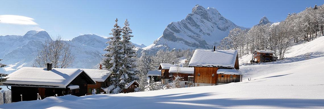 chalets ski montagne immobilier