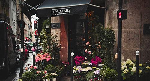 recherche immobiliere boutique